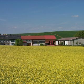 Putenhof Bentz in Kirchardt