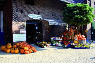 Bauernhof Hegger Hofladen in Willich