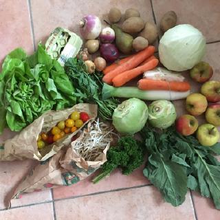 Obst- und Gemüsehof Langen in Kerpen-Buir