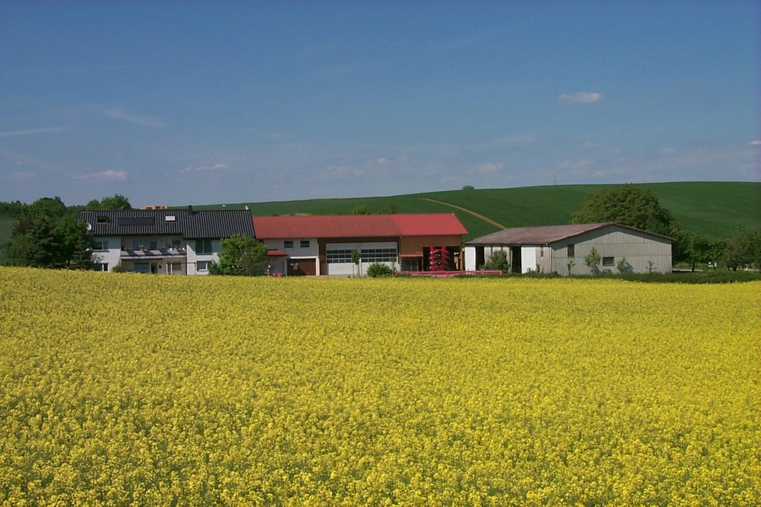 michaelsberg gundelsheim 1 mai