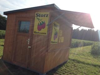 Storz Himbeeren in Planegg/Krailing
